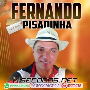 Fernando Pisadinha - Sequencia De Vapo Vapo 2020