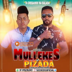 Forró Mullekes da Pisada - Vol. 02 2021