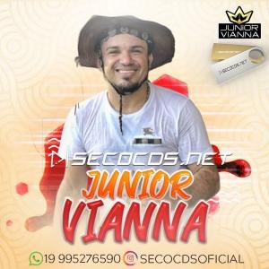 Junior Vianna - Pra Paredão Março 2020