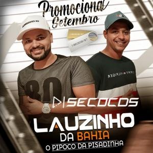 Lauzinho Da Bahia - Promocional De Setembro - 2020