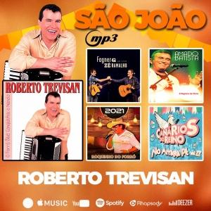MP3 São João - Promocional 2021