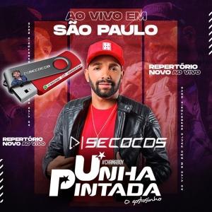 Unha Pintada - Ao Vivo Sao Paulo Musicas Novas 2021