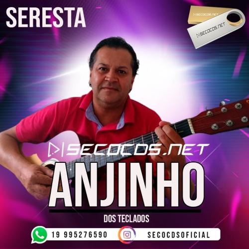 Anjinho Dos Teclados - Seresta 2020