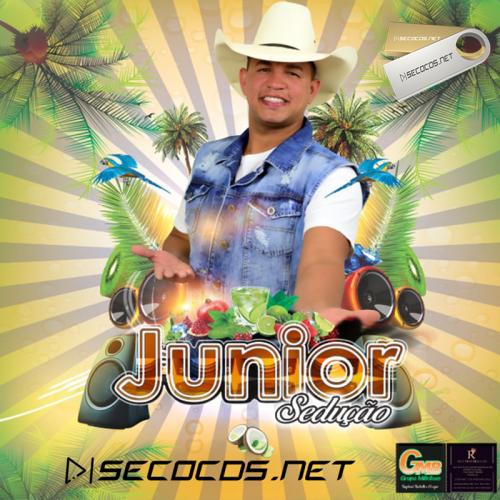 Junior Sedução - O Estouro De Minas 2021
