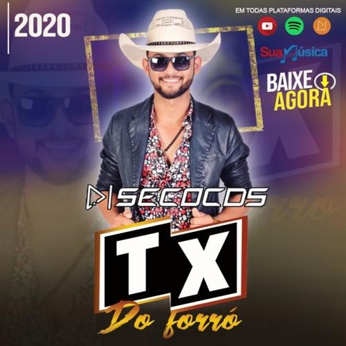 Tx Do Forro - Tx Do Forro Promocional 2020