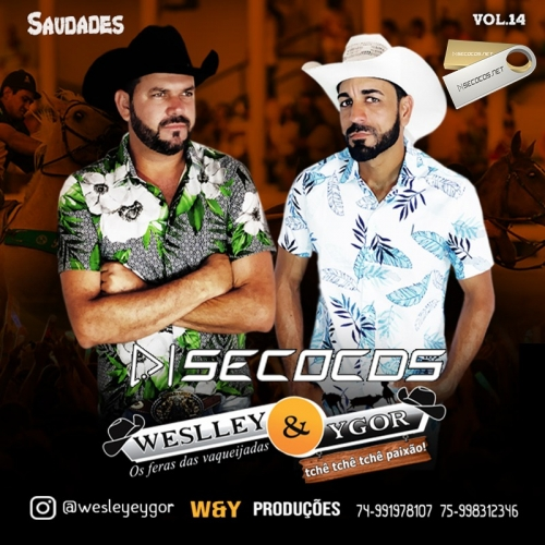 Weslley e Ygor - Saudades Promocional 2021
